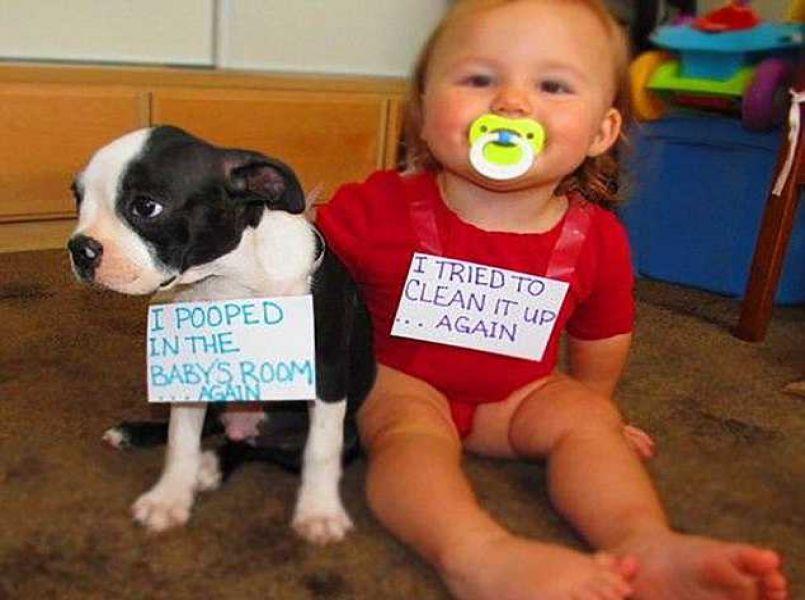 Foto's: ouders 'straffen' hun jonge kind online