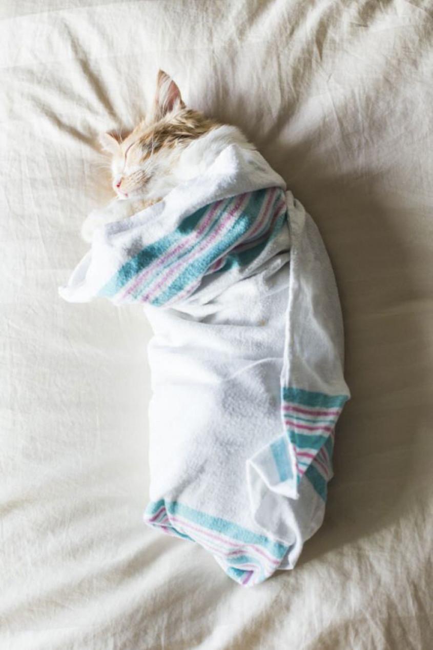 geboortefotoshoot