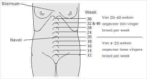 Zwanger hoge rugpijn rechts