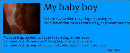 Zwangerschapsticker